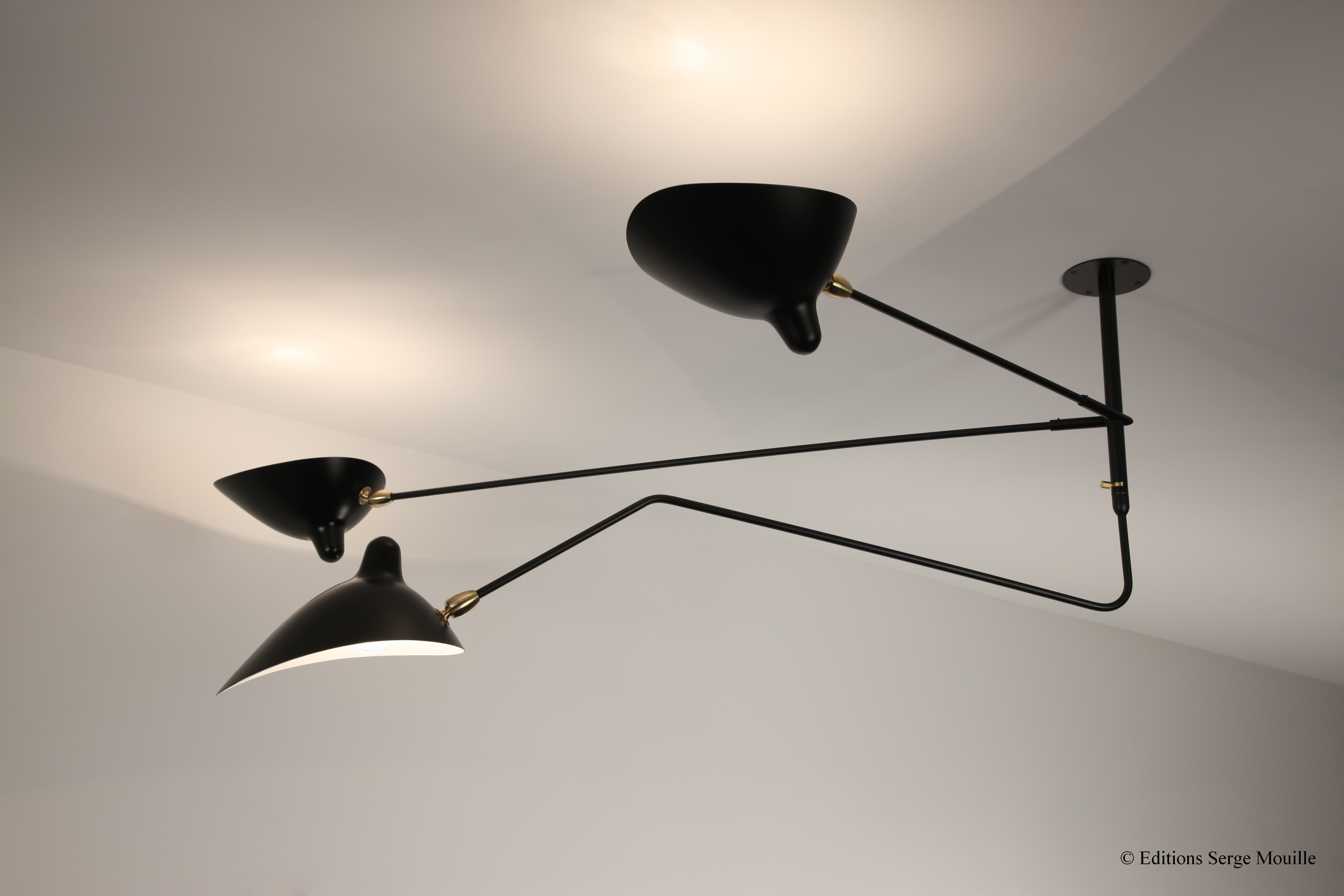 Ceiling Lamp 2 Fixed Arms 1 Rotating Curved Arm